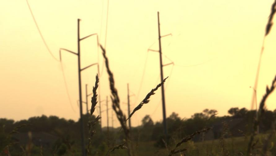 http://www.stanyakahn.com/files/gimgs/th-11_prairie-grass.jpg